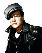 1950s Portraits Framed Prints - The Wild One, Marlon Brando, 1954 Framed Print by Everett