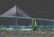 Sunshine Skyway Bridge Prints - The Wind Surfer Print by David Lee Thompson