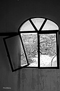 Abandoned House Photos - The Window by Cheryl Young