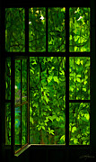 Nature Scene Digital Art Metal Prints - The Window Metal Print by Dale Jackson
