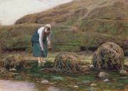 Fishing Painting Posters - The Winkle Gatherer Poster by John Dawson Watson