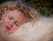 Storybook Prints - The Winter Sleep Print by Terry Kirkland Cook