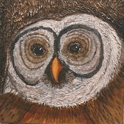 Arnold Originals - The Wisdom of Whooo by Marcia Arnold Eisworth