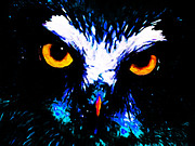 Great Digital Art - The Wise Old Owl Sees All by Wingsdomain Art and Photography