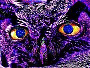 Owl Metal Prints - The Wise Owl Sees All Metal Print by Wingsdomain Art and Photography