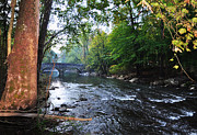 Fairmount Park Prints - The Wissahickon Creek Print by Bill Cannon