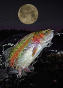 Trout Framed Print Prints - The Wolf Moon Print by Brian Pelkey