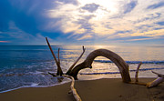 Driftwood Sea Mediterranean Sunset Sky Cloud Water Calm Serenity Prints - The wooden arch Print by Marco Busoni