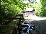 Grist Mill Prints - The Working Mill Print by Regina Hall