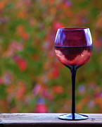 Chardonnay Posters - The World through a Wine Glass Poster by Jeanne Quinn