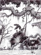 Wren Drawings - The Wren Jungle by Doug Hiser