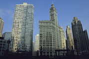 Timepieces Posters - The Wrigley Building Adorns Chicagos Poster by Joel Sartore