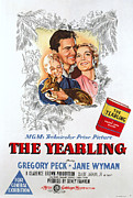 1946 Movies Posters - The Yearling, Claude Jarman Jr Poster by Everett