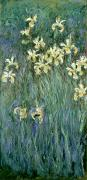 Flower Still Life Painting Framed Prints - The Yellow Irises Framed Print by Claude Monet