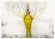 Mystical Landscape Art - The Yellow Plant by Bjorn Eek