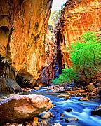 Virgin River Prints - The Zion Narrows Print by Frank Houck