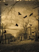 Corvidae Framed Prints - Then There Were Crows Framed Print by Gothicolors With Crows
