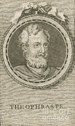 Theophrastus, Ancient Greek Polymath Print by Science Source