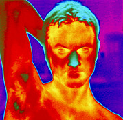Thermogram Prints - Thermogram Of A Mans Head And Shoulders Print by Dr. Arthur Tucker