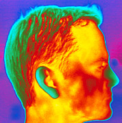 Thermogram Prints - Thermogram Of A Mans Head In Profile Print by Dr. Arthur Tucker