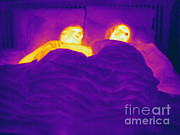 Adult Male Posters - Thermogram Of A Sleeping Couple Poster by Ted Kinsman