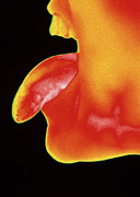 Thermogram Prints - Thermogram Of A Woman Sticking Her Tongue Out Print by Dr. Arthur Tucker