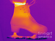 Ice-skating Posters - Thermogram Of An Ice Skate Poster by Ted Kinsman
