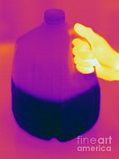 Electromagnetic Spectrum Photos - Thermogram Of Milk Jug by Ted Kinsman