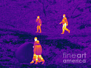 Electromagnetic Spectrum Photos - Thermogram Of People Walking by Ted Kinsman