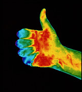 Thumbs Up Framed Prints - Thermogram Of The Thumbs Up Sign Framed Print by Dr. Arthur Tucker