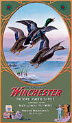 Mallard Posters - They Are Hitters Poster by Lynn Bogue Hunt