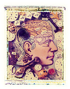 Brains Prints - Thinking Print by Garry Gay