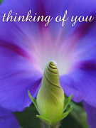 Inside You Posters - Thinking Of You Poster by Tina Marie