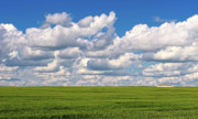 Crops Originals - This is Alberta No.13 - Prairie Crops by Paul W Sharpe Aka Wizard of Wonders