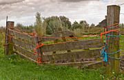 Old Wooden Fence Posts Prints - This is also a fence Print by Ruud Morijn