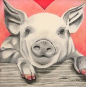 Drawing Of Pig Pastels Posters - This little piggy... Poster by Michelle Hayden-Marsan