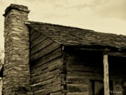 Log Cabin Art Photos - This Old Cabin by Betty Northcutt