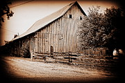 Cornfield Photos - This Old Farm I by Kathy Sampson