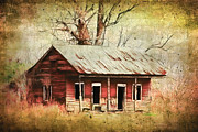 Haunted Shack Framed Prints - This Old House Framed Print by Judi Bagwell