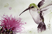 Hummingbird Paintings - Thistle by Dawn Derman