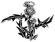 Linoleum Block Print Photo Prints - Thistle, Lino Print Print by Gary Hincks