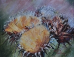 Sonoma County Originals - Thistledown by Debbie Harding