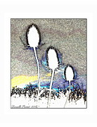 Blue Thistles Framed Prints - Thistles White Trio  Framed Print by Danielle  Parent