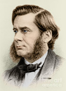 Comparative Anatomist Posters - Thomas Huxley, English Biologist Poster by Science Source