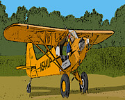 Piper Cub Prints - Thomas Print by Steven Richardson