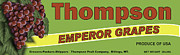 Grape Leaves Posters - Thompson Grapes Poster by John OBrien