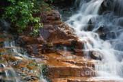 Thoreau Falls - White Mountains New Hampshire  Print by Erin Paul Donovan