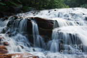 Thoreau Falls - White Mountains New Hampshire Usa Print by Erin Paul Donovan