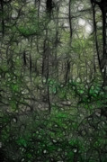 Walden Pond Photo Posters - Thoreau Woods Fractal Poster by Lawrence Christopher