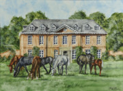 Herd Of Horses Prints - Thoroughbreds Grazing At Squerryes Court Print by Charlotte Blanchard